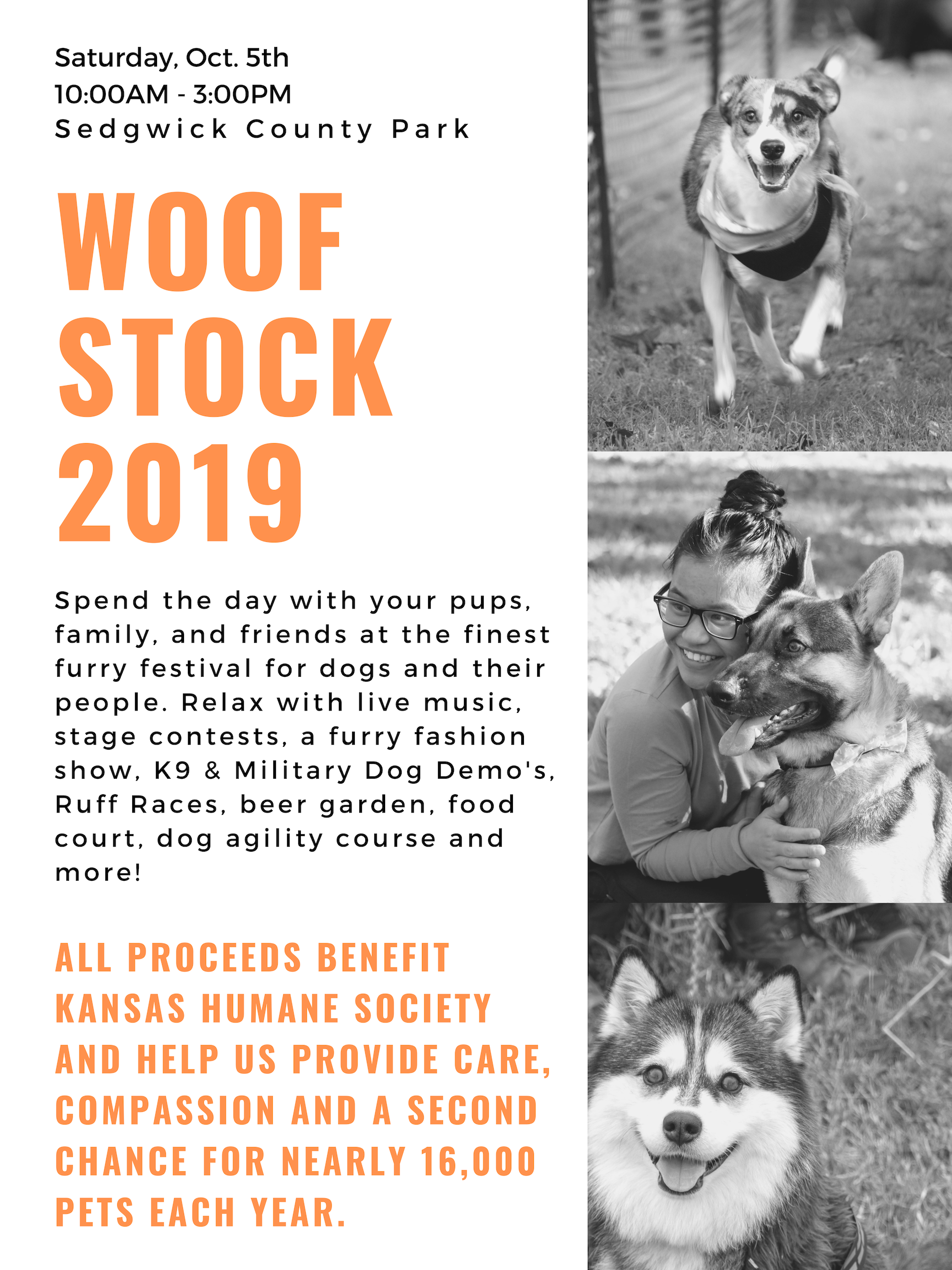 Woofstock2019Testing2.png